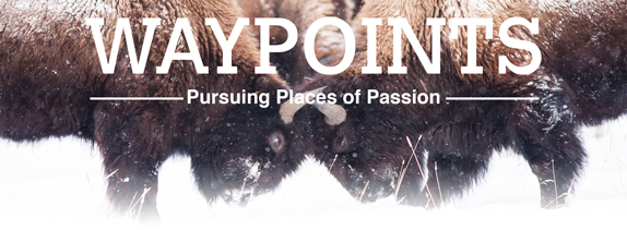 WaypointsPursuing Places of Passion