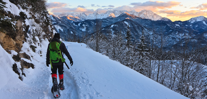 Five Reasons to Go Snowshoeing