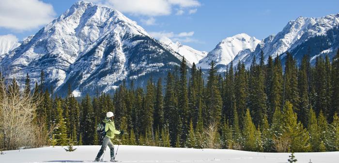 12 Best Snowshoeing Destinations in North America