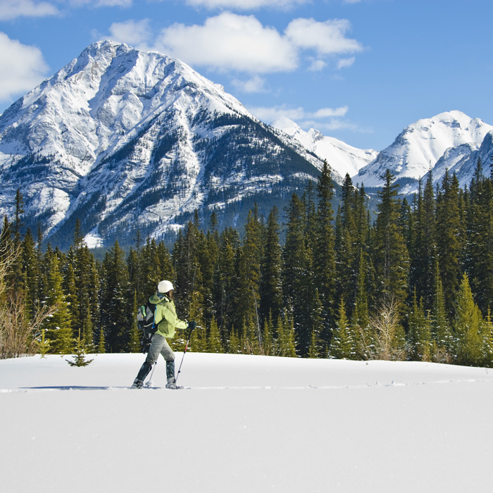 12 Best Snowshoeing Destinations in North America